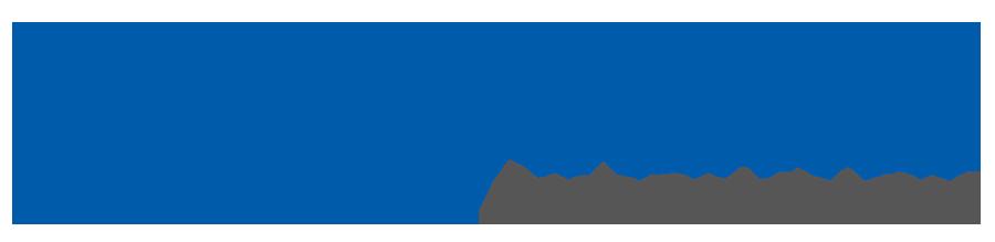 W Systems Logo